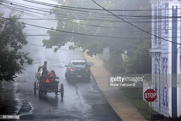 A horse carriage on the foggy street