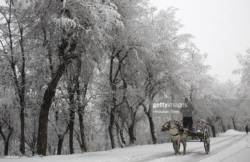 A horse cart moves on the road during a heavy snowfall on December 31, 2013 in Srinagar, India. Kashmir today received heavy snowfall in the beginning of its 40-day period of harsh winter. The strategic Srinagar-Jammu National Highway was closed in the morning due to heavy snowfall in Banihal and Patnitop sectors.