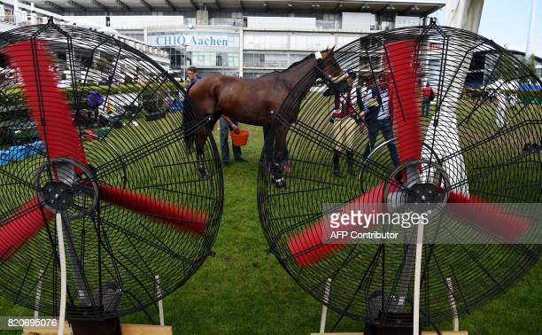 A horse cools down in front of ventilation props during the World Equestrian Festival CHIO in Aachen western Germany on July 22 2017 / AFP PHOTO /...
