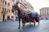 Horse drawn carriage at the Spanish Steps in Rome