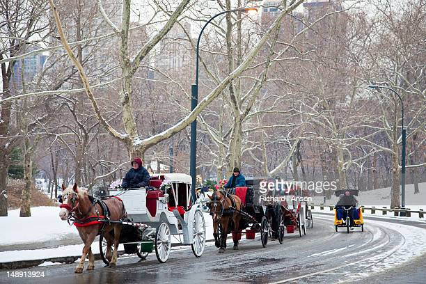 Horse drawn carriages and bicycle rickshaw in Central Park in winter.