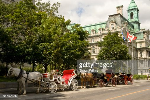 Horse drawn carriages in front of City Hall