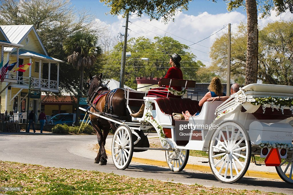 Horse drawn on the road, St. Augustine, Florida, USA