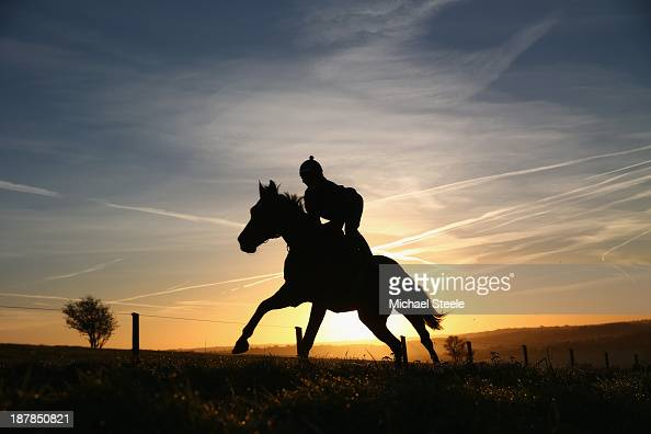 A horse during early morning gallops at the stable of Nigel TwistonDavies at Luckley on November 13 2013 in Gloucester England