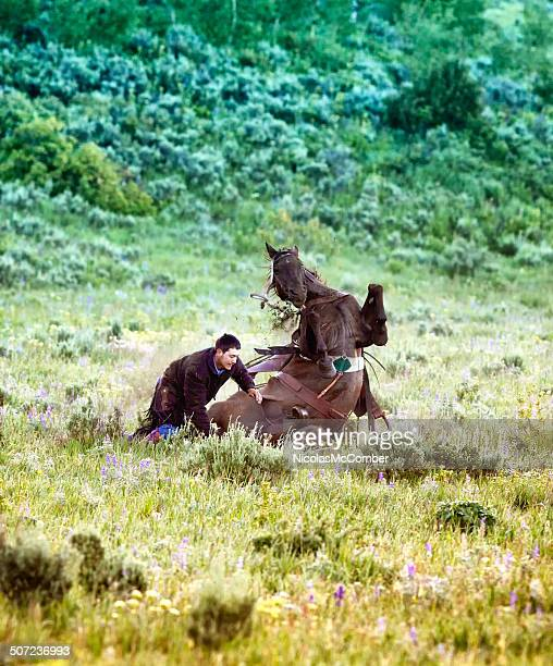 Horse fall in sage brush