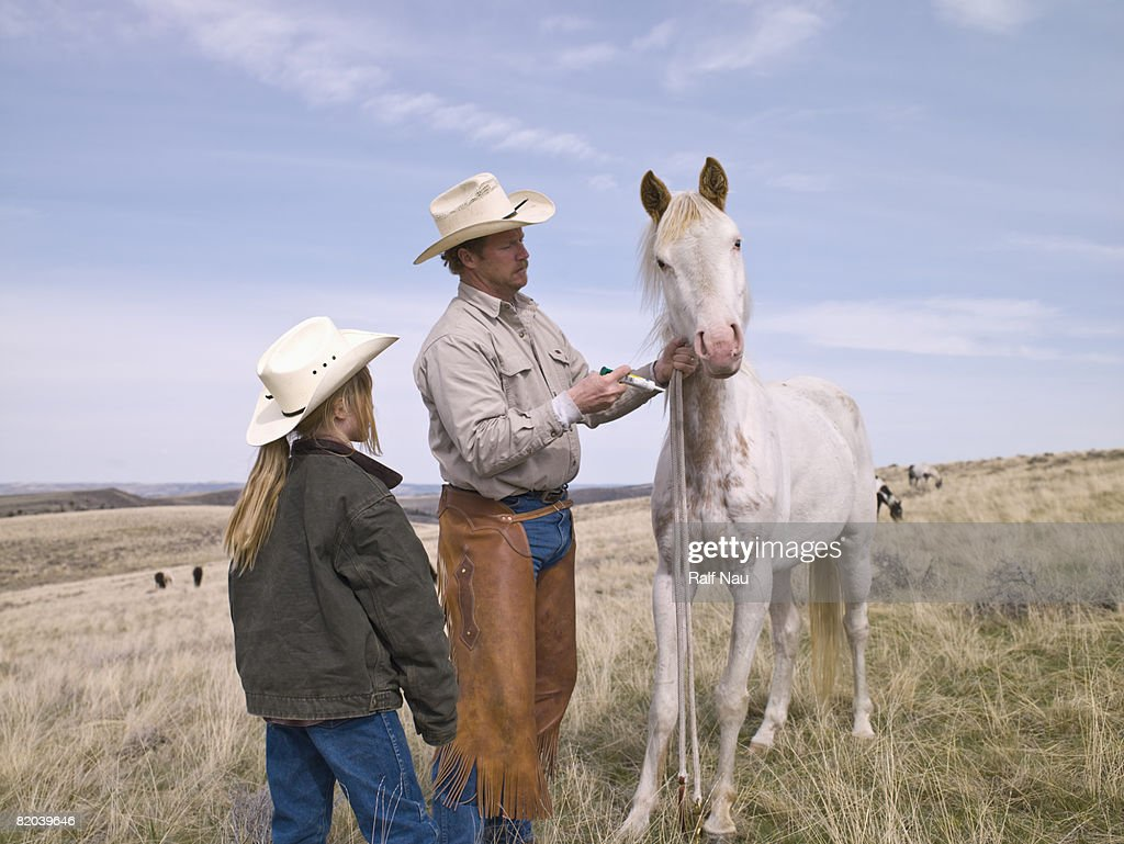 Horse getting shot from cowboy : Stock Photo