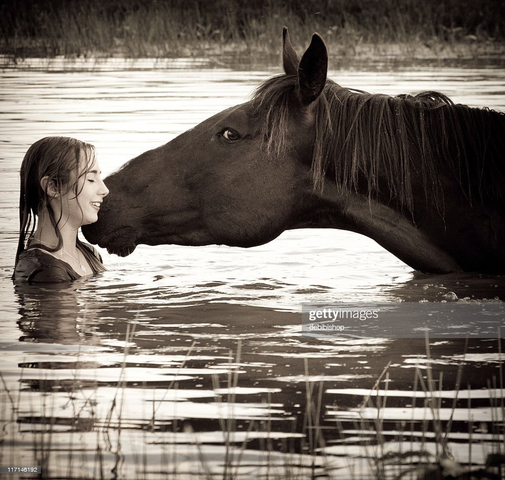 Horse Giving Affection To Girl : Stock Photo