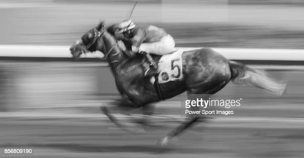 Horse Gran Master ridden by Joao Moreira competes during the race 5 of HKJC Horse Racing 201718 at the Sha Tin Racecourse on 16 September 2017 in...