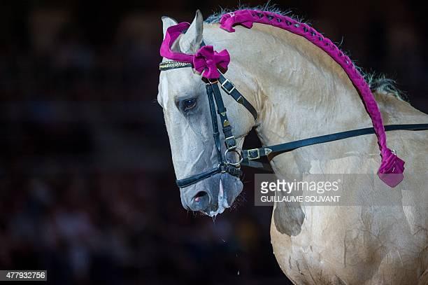 A horse is seen at the French national equestrian school 'Le Cadre noir de Saumur' during the new show 'Danse avec le Cadre Noir' in Saumur on June...
