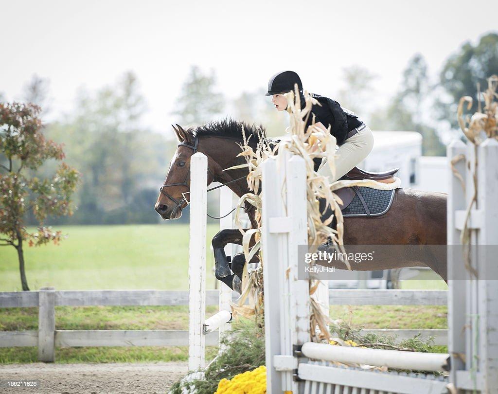 Horse jumper focused on the next jump