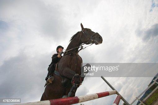 Horse jumping over hurdles