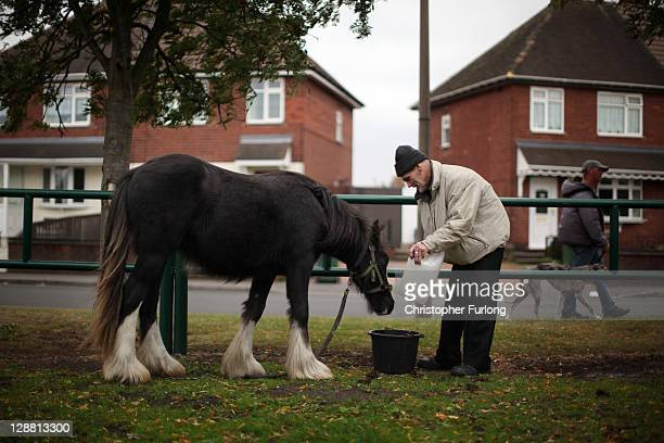 Horse owner Steve Bradwich stands next to his horse one of many horses tethered on land that may be seized by bailiffs on October 10 2011 in Dudley...