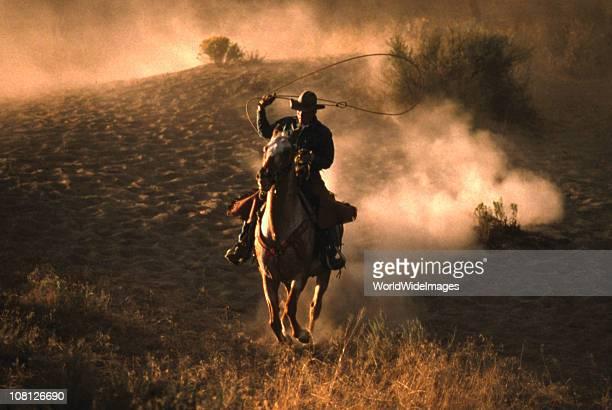 Course de chevaux à l'aube