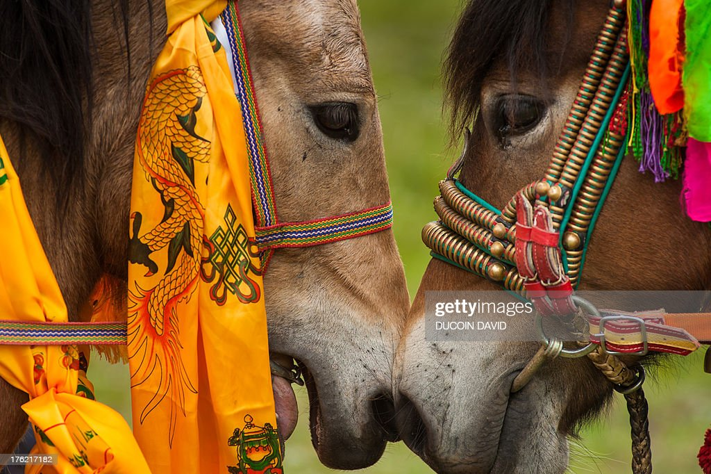 Horse race in Sichuan, Tibet, China : Stock Photo
