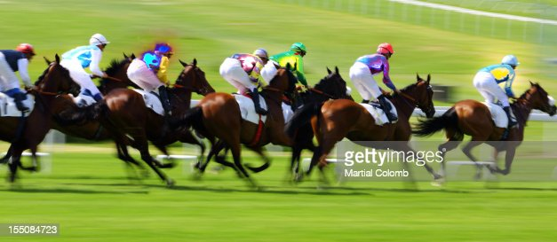 horse race : Stock Photo
