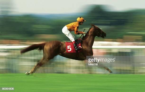 Horse racing at Ascot, Ascot, UK