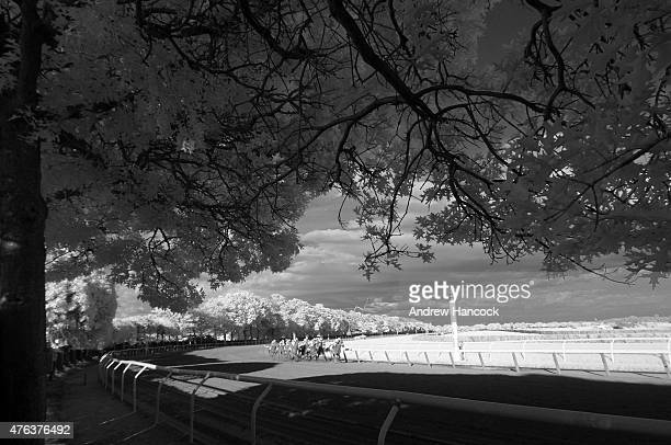 Belmont Stakes Infrared view of Victor Espinoza in action leading race aboard American Pharoah at Belmont Park American Pharoah wins Triple Crown...