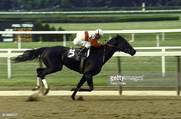 Horse Racing Coach Club America Oaks Jacinito Vasquez in action leading race aboard Ruffian at Belmont Park Elmont NY 6/21/1975