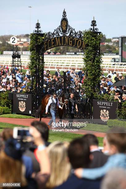 Horse racing fans take photos of Winx prior to the Seppelt Turnbull Stakes during Turnbull Stakes Day at Flemington Racecourse on October 7 2017 in...
