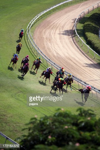 Horse Racing from above 3