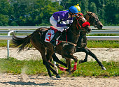 Horse racing for the prize Melekusha in Pyatigorsk,Northern Caucasus,Russia.