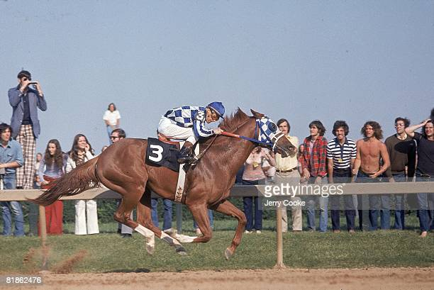 Horse Racing Preakness Stakes Ron Turcotte in action aboard Secretariat at Pimlico Race Track Baltimore MD 5/19/1973