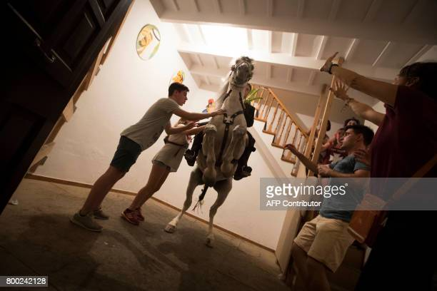 A horse rears inside a house during the traditional San Juan festival in the town of Ciutadella on the Balearic Island of Menorca in the night before...