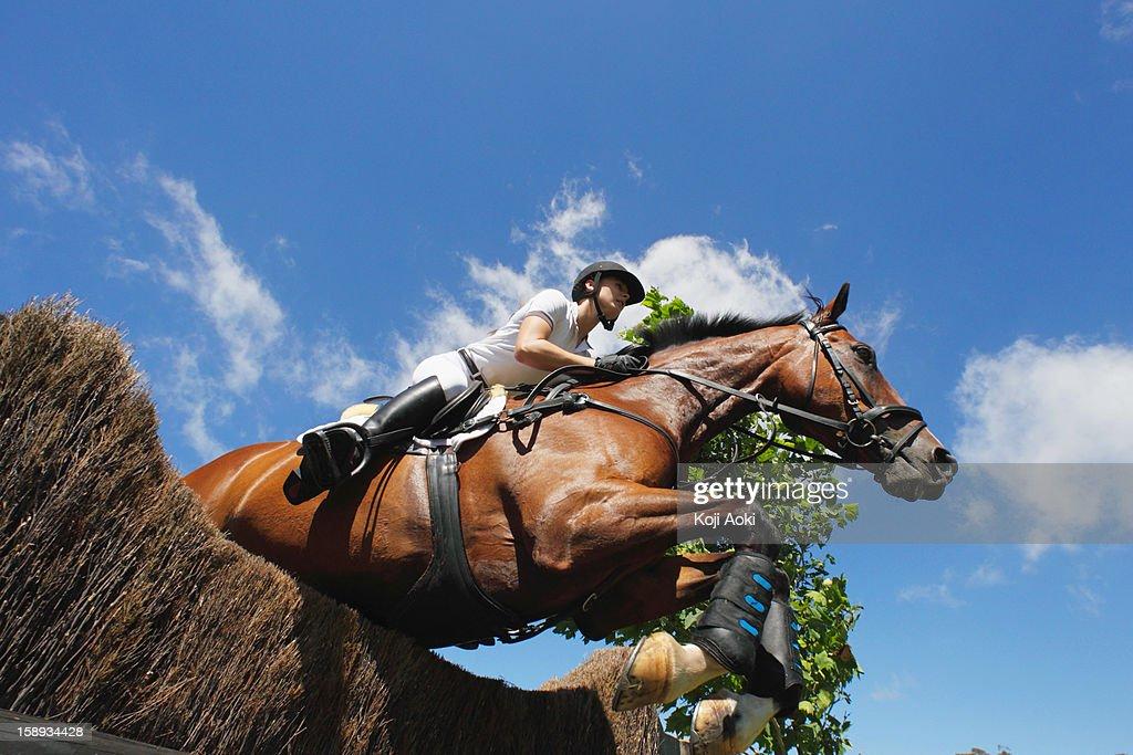 Horse Rider Jumping Hurdle