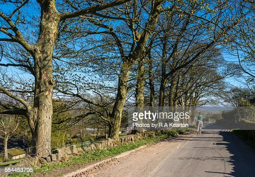 Horse rider on an English country road in spring