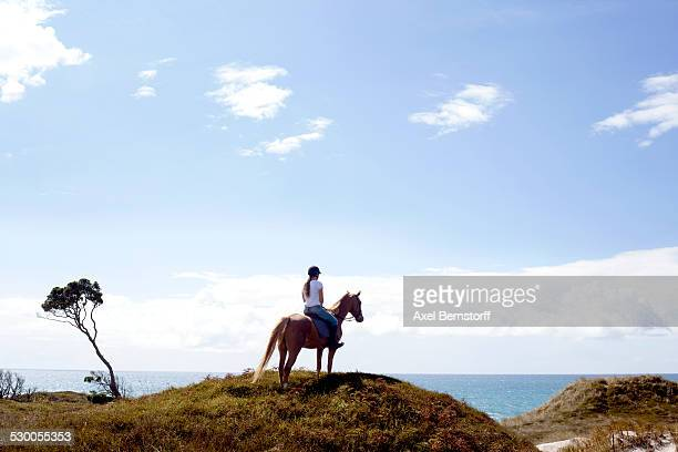 Horse rider on hilltop, Pakiri Beach, Auckland, New Zealand