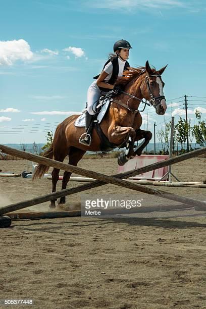 Pferd Fahrer