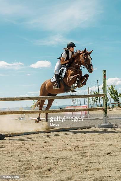Cavalier de cheval