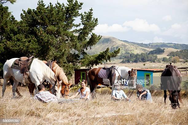 Horse riders taking break on grass, Pakiri Beach, Auckland, New Zealand