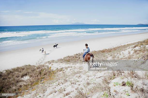 Horse riding, Pakiri Beach, Auckland, New Zealand