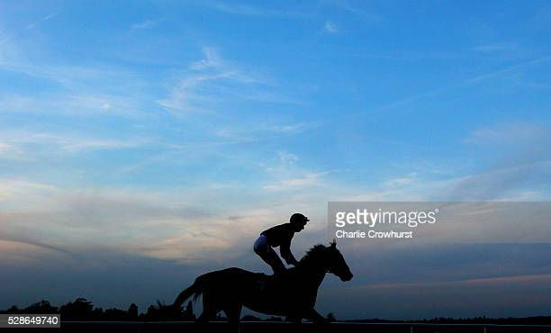 Horse runs back after competing in The Mitie Total Security Handicap Stakes at Ascot racecourse on May 06 2016 in Ascot England