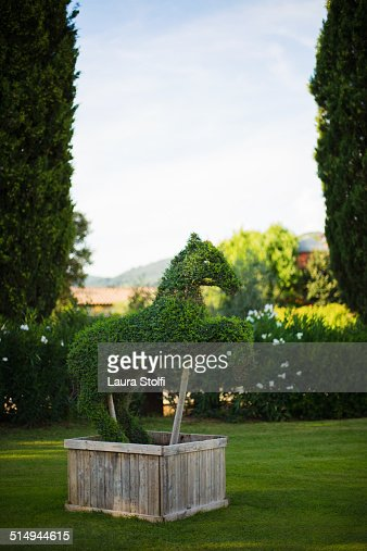 Horse shaped hedge topiary art in garden