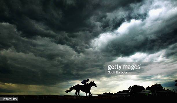 A horse sprints to the finish line during a race of the final day of Royal Ascot at the Ascot Racecourse on June 19 2004 in Berkshire England The...