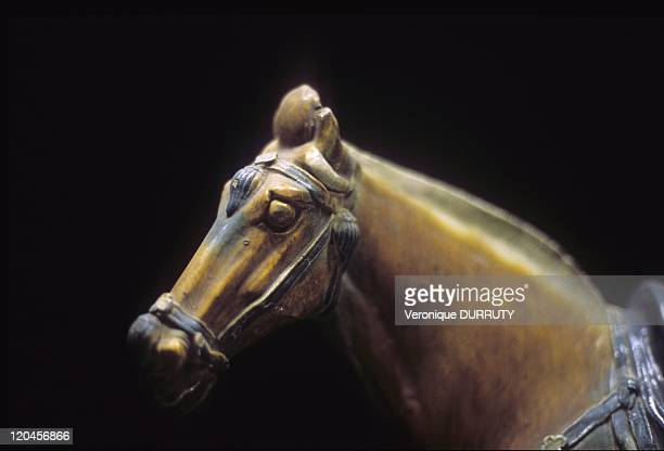 Horse Tang Dynasty Of Fordidden City In Beijing China