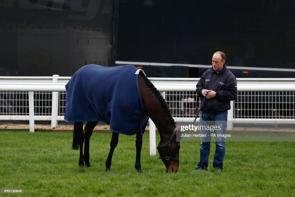 A horse trained by Gordon Elliot enjoys a pick of grass after an early morning exercise session during Champion Day of the 2017 Cheltenham Festival at Cheltenham Racecourse.