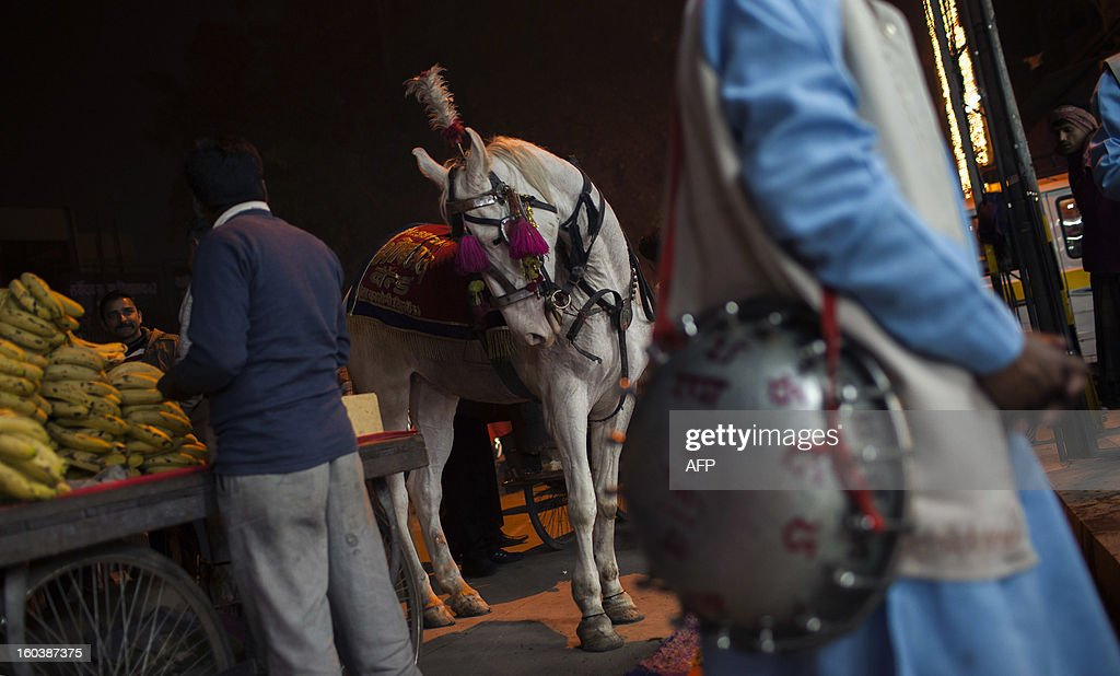 A horse used in weddings looks at a banana vendor as an Indian band member (R) waits for the start of a wedding in the Old Quarters in New Delhi on January 30, 2013. Emerging economies are set to grow faster than the developed economies over the next four decades and India is likely to become one of the three largest economies by 2050, said a Pricewaterhouse Coopers report. AFP PHOTO/ Andrew Caballero-Reynolds