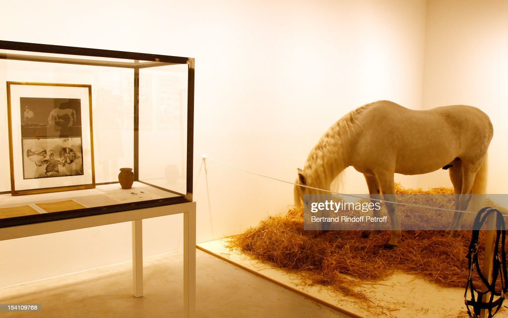 A horse, which is part of a piece by artist Joseph Beuys, is seen at the exhibition 'Iphigenie', during the opening of Thaddaeus Ropac's new gallery on October 13, 2012 in Pantin, France.