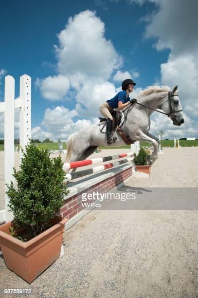 Horseback riding at equestrian stables
