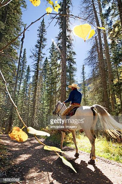 horseback riding forest
