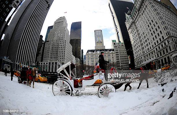 A horsecart waits for customers after heavy snow falls in New York January 27 2011 New York shut down two airports public schools and most city...