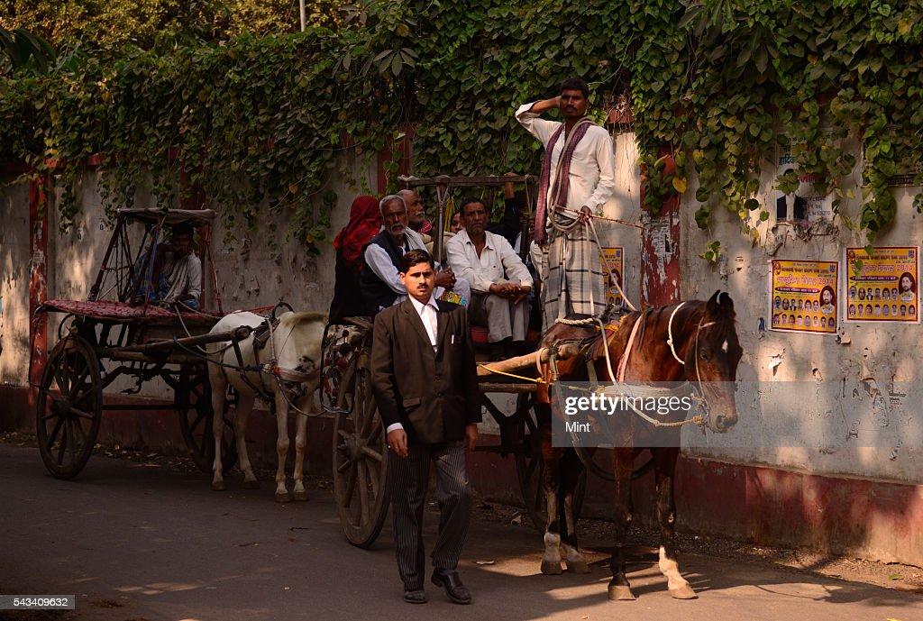 Horsecarts waiting for passangers near Allahabad highcourt on November 19, 2014 in Allahabad, India.