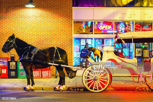 Horse-Drawn Carriage and Dog in Memphis Tennessee USA