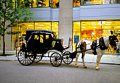 A horse-drawn carriage outside a store in Chicago, Illinois, USA