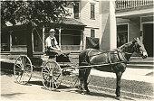 HorseDrawn Cart