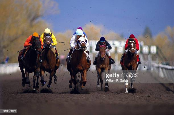 Horsemen racing at derby