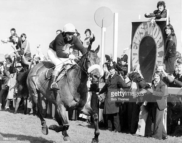 HorseRacing 2nd April 1977 Grand National at Aintree Red Rum wins the National for an historic 3rd time His previous victories were in 1973 and 1974